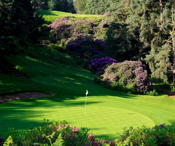 Photo of Woburn Golf Club (Duke's course)