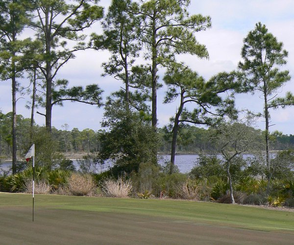 Photo of Shark's Tooth Golf Club