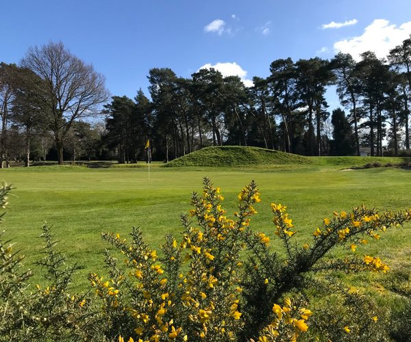 Photo of Camberley Heath Golf Club