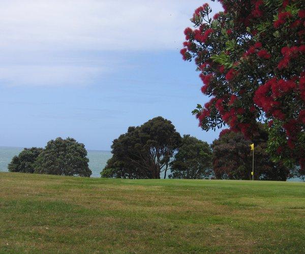 Photo of Waitangi Golf Club