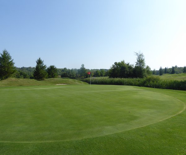 Photo of Royal Niagara Golf Club