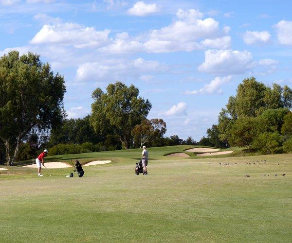 Photo of Riverside Oaks Golf Resort (Bungool course)