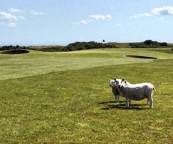 Photo of Brora Golf Club