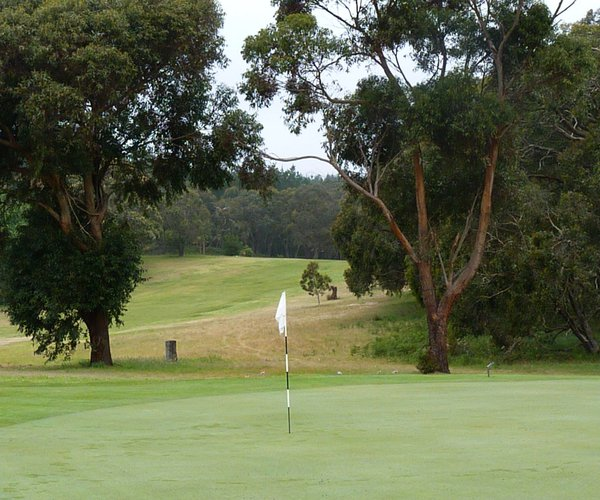 Photo of Millicent Golf Club