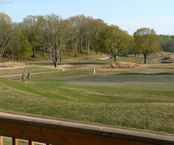 Photo of Mirimichi Golf Course