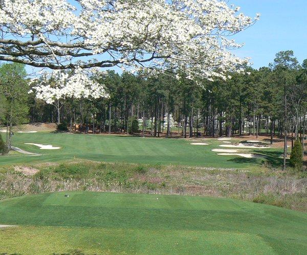 Photo of Pinehurst No.7 Golf Course