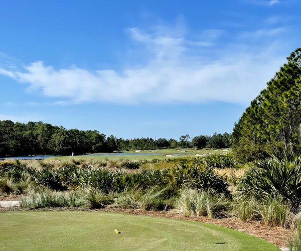 Photo of The Concession Golf Club