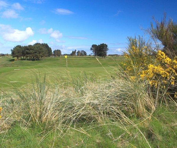 Photo of Monifieth Golf Links