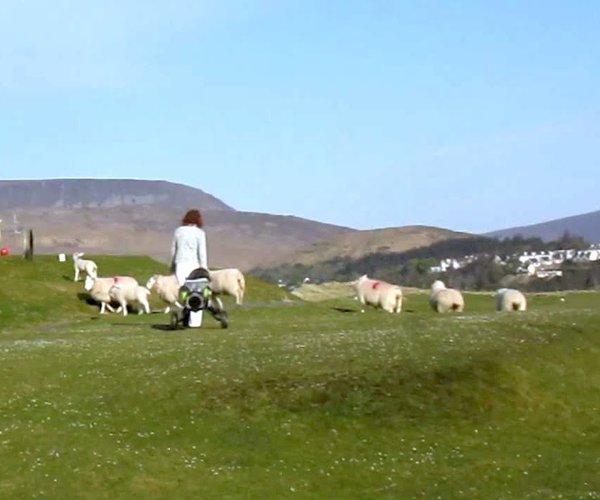 Photo of Mulranny Golf Club