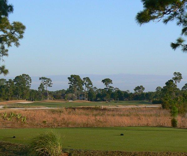 Photo of PGA Golf Club (Dye course)