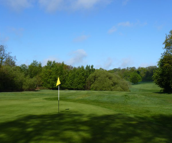 Photo of Mannings Heath Golf Club (Waterfall course)