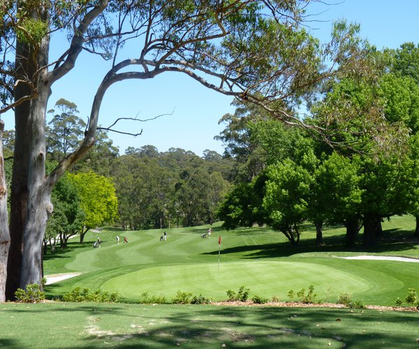 Photo of Pymble Golf Club
