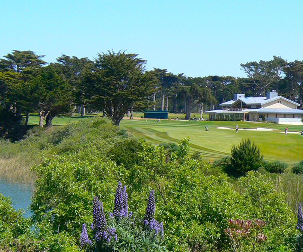 Photo of TPC Harding Park