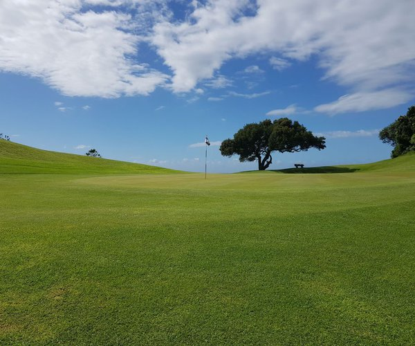 Photo of East London Golf Club
