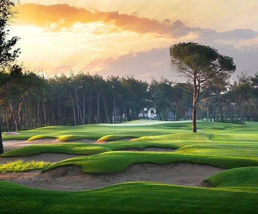 Photo of The Montgomerie Maxx Royal