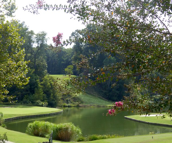 Photo of Golden Horseshoe Golf Club (Gold course)