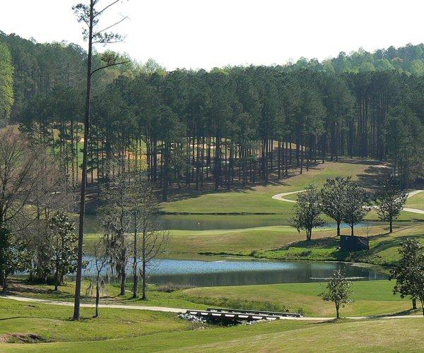 Photo of RTJ Golf Trail: Cambrian Ridge Golf Course