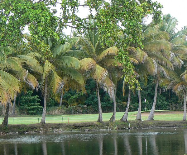 Photo of Berwind Country Club