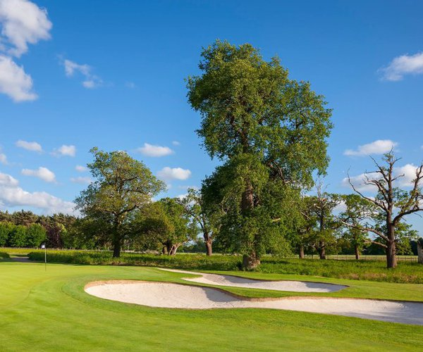 Photo of Forest of Arden Hotel & Country Club (Arden course)