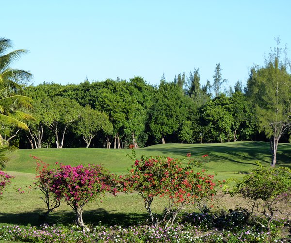 Photo of Belle Mare Plage Golf Club (Legend course)