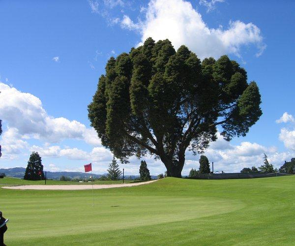 Photo of Tauranga Golf Club