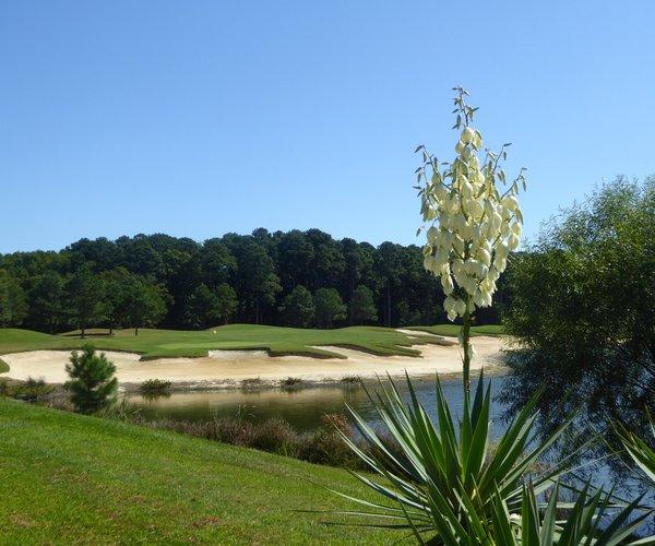 Photo of Bay Creek Resort & Club (Palmer course)