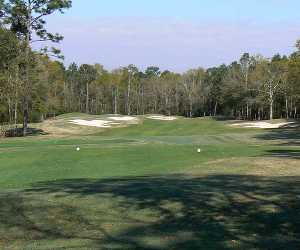 Photo of RTJ Golf Trail: Magnolia Grove (Crossings course)