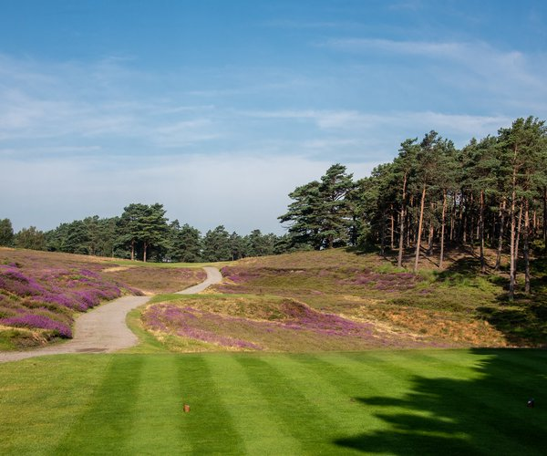 Photo of Sunningdale Golf Club (New course)