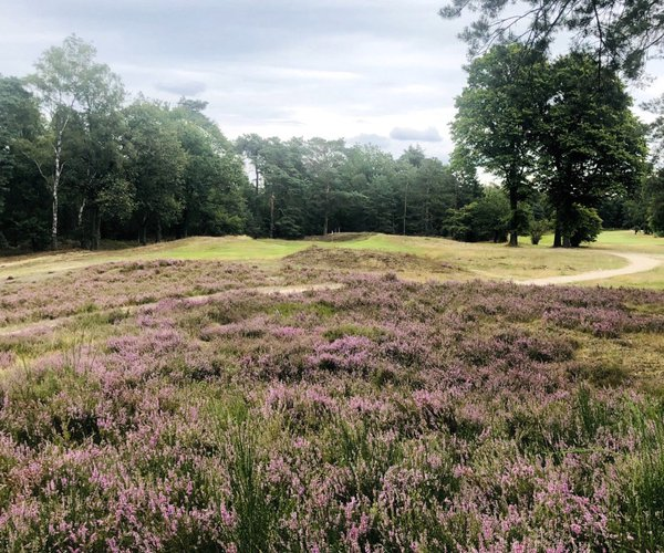 Photo of Eindhovensche Golf