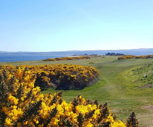 Photo of Fortrose & Rosemarkie Golf Club