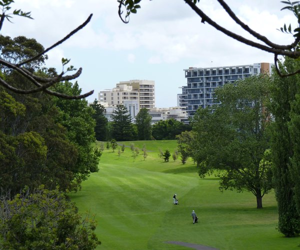Photo of Moore Park Golf