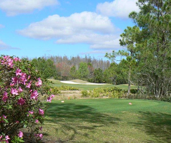 Photo of Westchase Golf Club