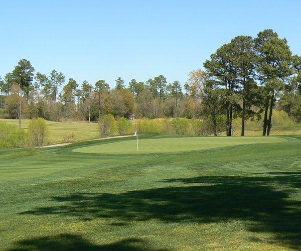 Photo of Sea Trail Golf Resort (Dan Maples course)